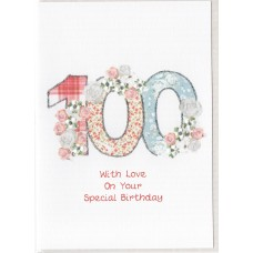 Special Birthday Number 100 Card SW PN100