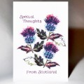 Scottish Greeting Card Special Thoughts Thistle WWGR18