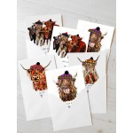 Coos Note Cards 6 pack
